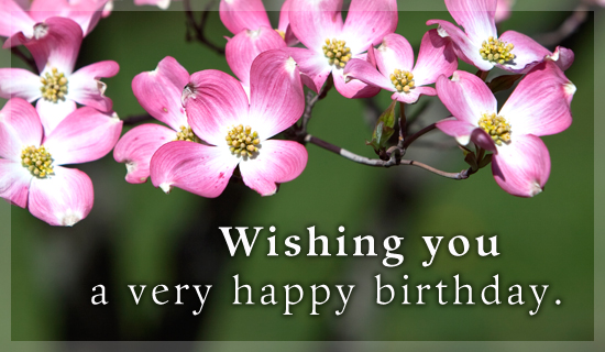 free online 123 birthday greeting cards ; innovative-123-american-greetings-e-cards-like-cheap-birthday-orchid-flowers-wishes-simple-design-email-free-birthday-cards