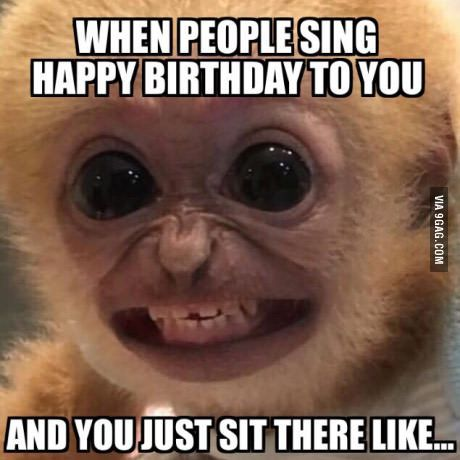funny happy birthday memes for her ; 16ed164f84a3ccf15964a493ccd81f38-funny-happy-birthdays-pictures-of