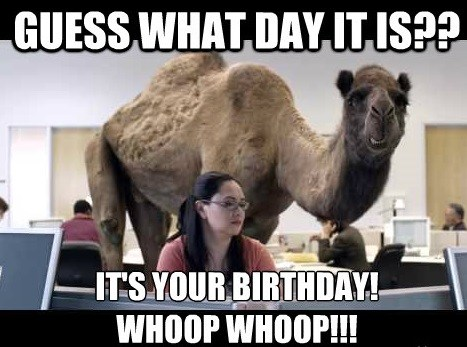 funny happy birthday memes for her ; guess-what-day-it-is-its-your-birthday-whoop-whoop-hilarious-happy-meme