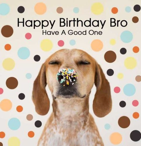 funny happy birthday wishes for brother ; happy-birthday-wishes-for-brother-funny-images-from-sister