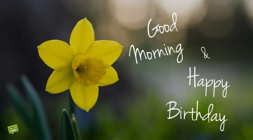 good happy birthday images ; Good-morning-and-happy-birthday-on-picture-with-flower