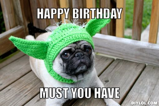 happy birthday animal meme ; 6-9
