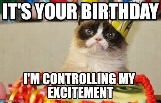 happy birthday animal meme ; Its-Your-Birthday-I-Am-Controlling-My-Excitement-Funny-Animal-Image