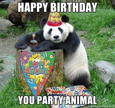 happy birthday animal meme ; party_animal
