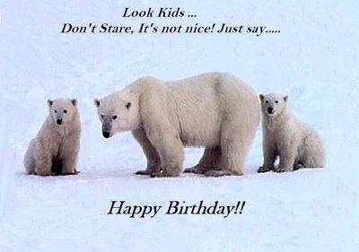happy birthday bear meme ; 582215227e683b28b3