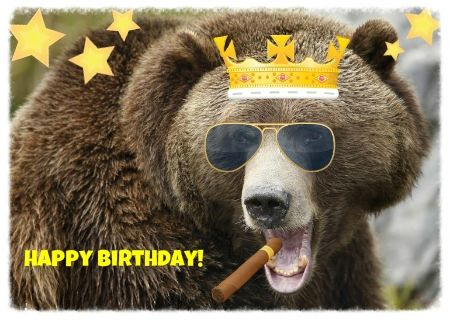 happy birthday bear meme ; cb3d28e2eb7c9045c3753389a792e229