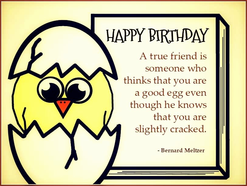happy birthday best friend quotes funny ; Birthday-Quotes-Funny-for-Friend-6