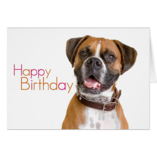 happy birthday boxer dog ; happy_birthday_boxer_card-re510902b3ba24a51ab8d13ff8ec78644_xvua8_8byvr_324