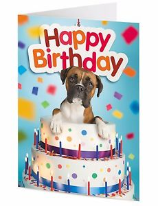 happy birthday boxer dog ; s-l300