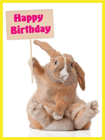 happy birthday bunny images ; a_b_day55-af465a899e096528ed01a8f90fb48ace