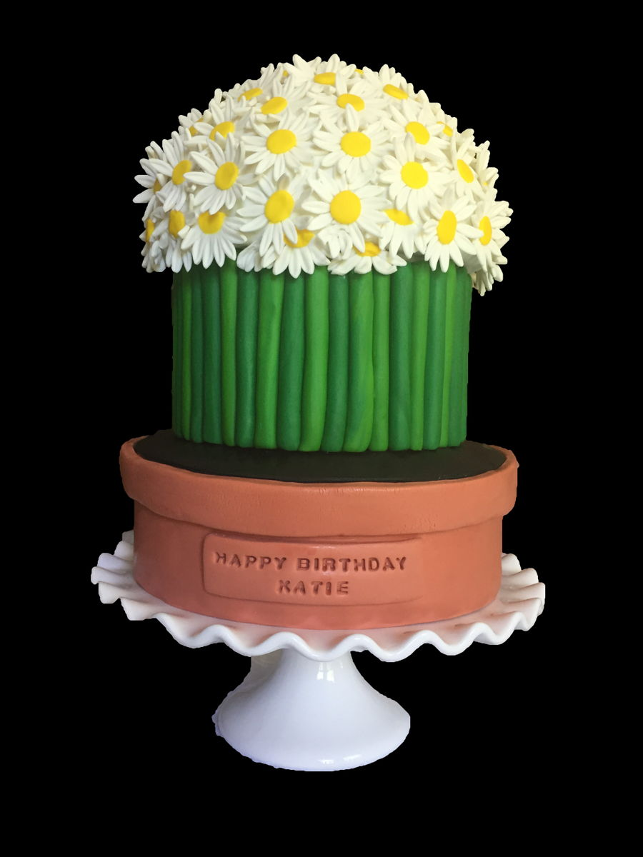 happy birthday daisy ; 900_happy-birthday-daisy-cake-948995G9kO4