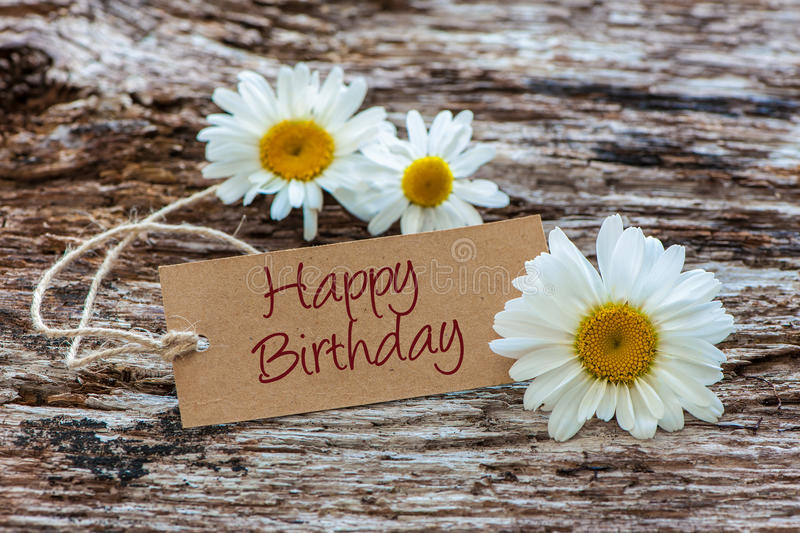 happy birthday daisy ; happy-birthday-daisy-flowers-tag-wooden-background-74654082