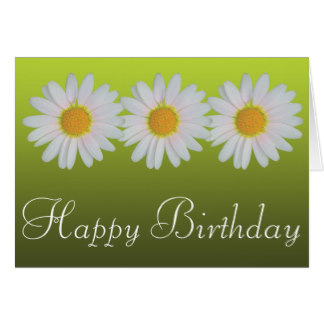 happy birthday daisy ; white_daisies_colorful_photo_happy_birthday_cards-r8737283d85704be8bcbba43a14ab6f13_xvua8_8byvr_324
