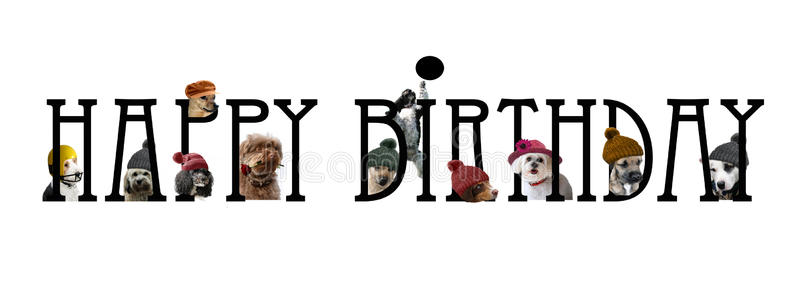 happy birthday dog clipart ; happy-birthday-lettering-dogs-design-card-cute-68156397