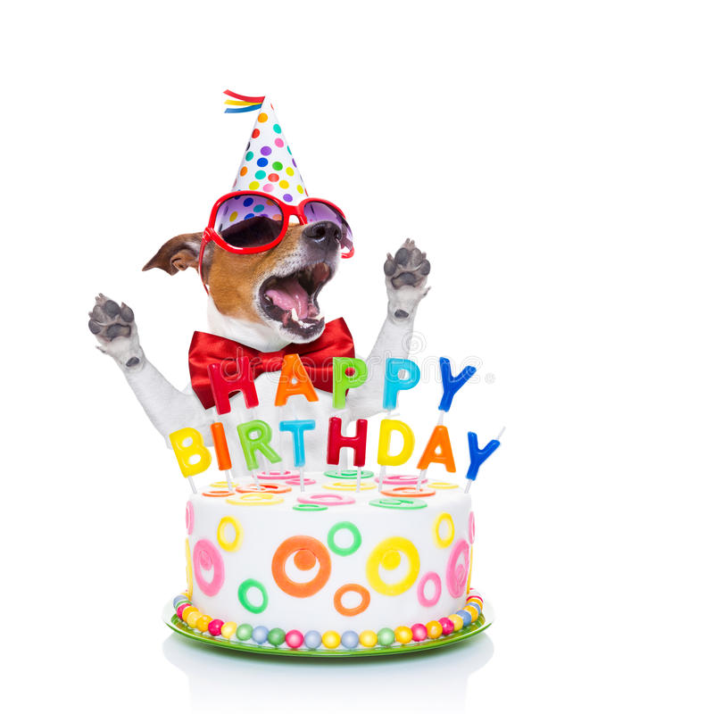 happy birthday dog pictures ; happy-birthday-dog-singing-jack-russell-as-surprise-song-behind-funny-cake-wearing-red-tie-party-hat-isolated-white-54087338