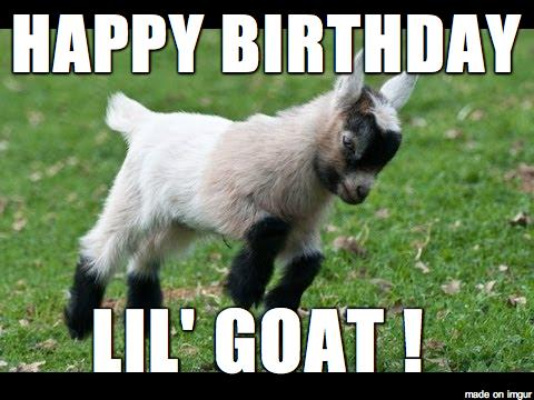 happy birthday goat meme ; damMgbI