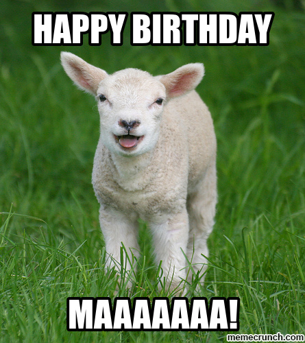 happy birthday goat meme ; image