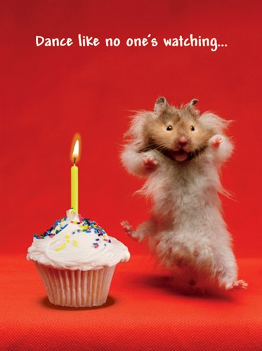 happy birthday hamster ; 1289-2