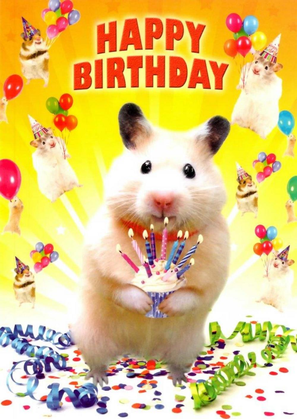 happy birthday hamster ; lrgscaleH281a-Birthday-Card