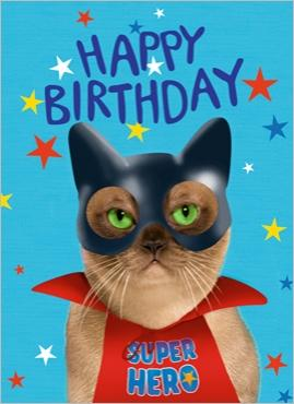 happy birthday hero ; img_Happy-birthday-super-hero--_F--DEVILLER-et-J-M--LABAT_ref~160