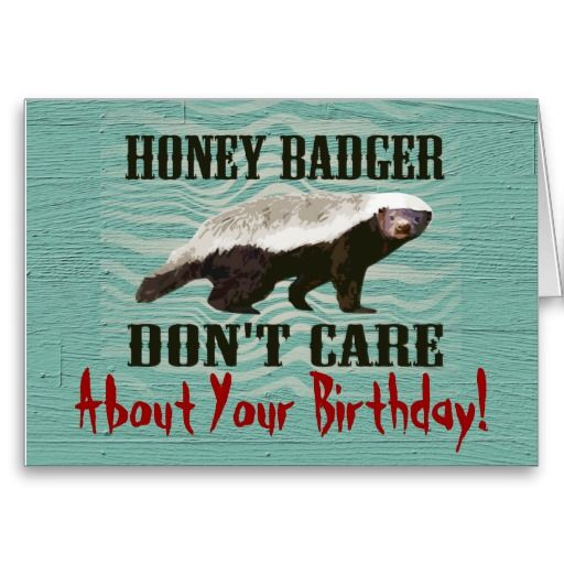 happy birthday honey badger ; 22e05b90fe3d0564f2fbf325c1485598--funny-birthday-cards-birthday-stuff