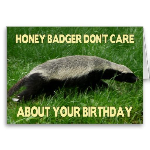 happy birthday honey badger ; 5d53fbb38f54859956f9447477a59584
