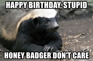 happy birthday honey badger ; 63515551