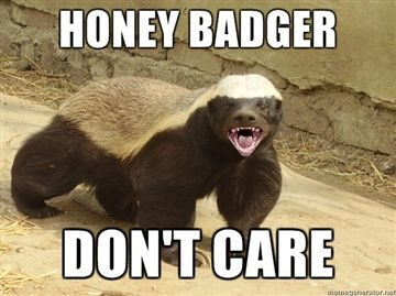 happy birthday honey badger ; 7115ef4f246a40066a8cd6377241553e