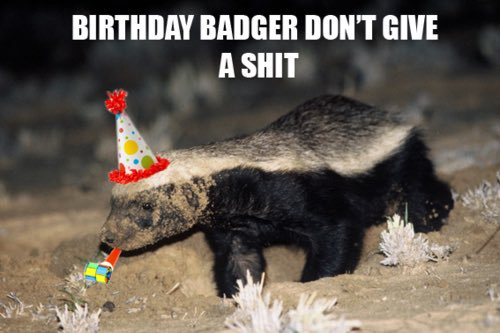 happy birthday honey badger ; CnyjgemWgAAXqTV