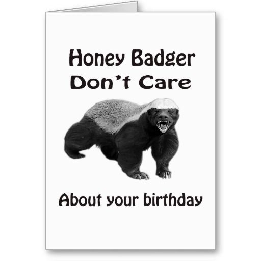 happy birthday honey badger ; a46a32bea6fa66e7a8048c88d8350957--birthday-greeting-card-christmas-greeting-cards