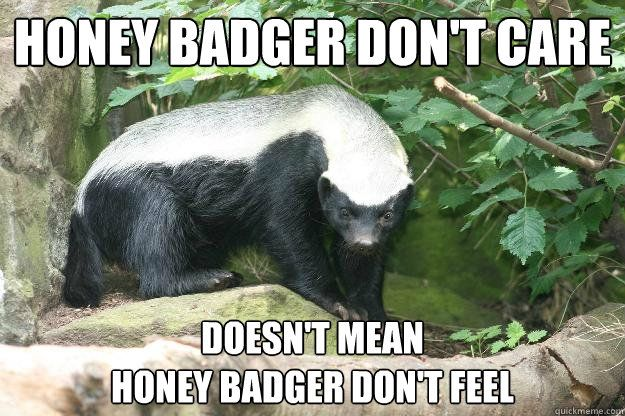 happy birthday honey badger ; c2178c9b81adf5041d607f8acb161694
