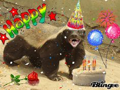 happy birthday honey badger ; c65f437927219e8bbf7e1f1b6b6fc816--honey-badger-birthdays