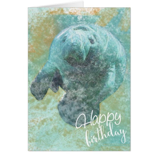 happy birthday manatee ; painted_manatee_happy_birthday_card-r8639d611dec844d981494adfea9cf080_xvuat_8byvr_540