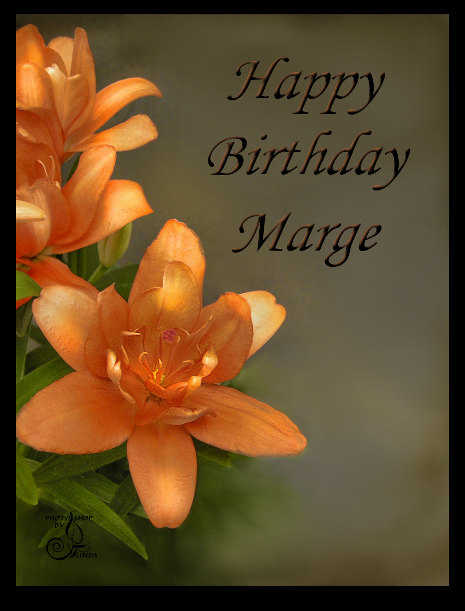 happy birthday marge ; 6b7f14d6875d28e98a4c9d99e3ea0d79