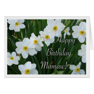 happy birthday maw maw ; happy_birthday_mamaw_narcissus_flowers_card-r1bd620ac6ebe422185abc1ce3781c504_xvuak_8byvr_324