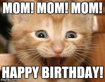 happy birthday mom memes ; 7e91509ad87e9ba761eb7d215fd9f816