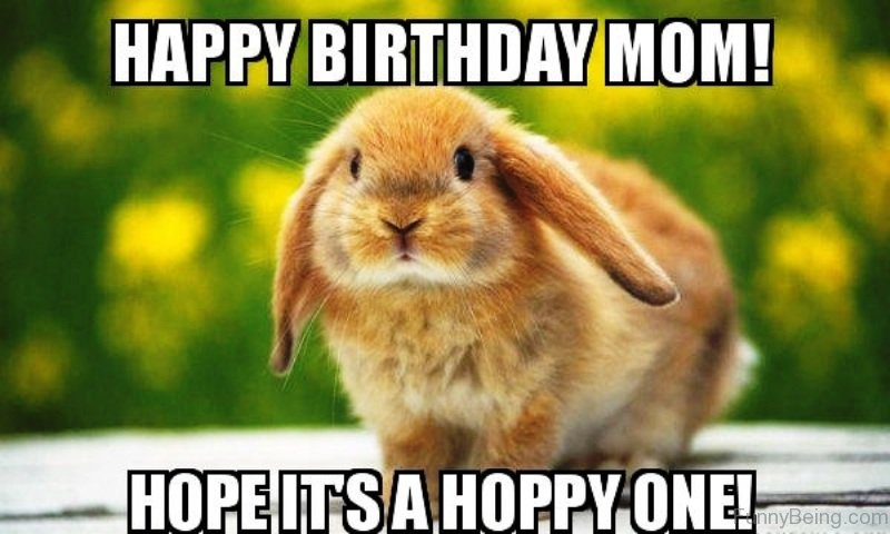 happy birthday mom memes ; Happy-Birthday-Mom-Hope-Its-A-Hoppy-One