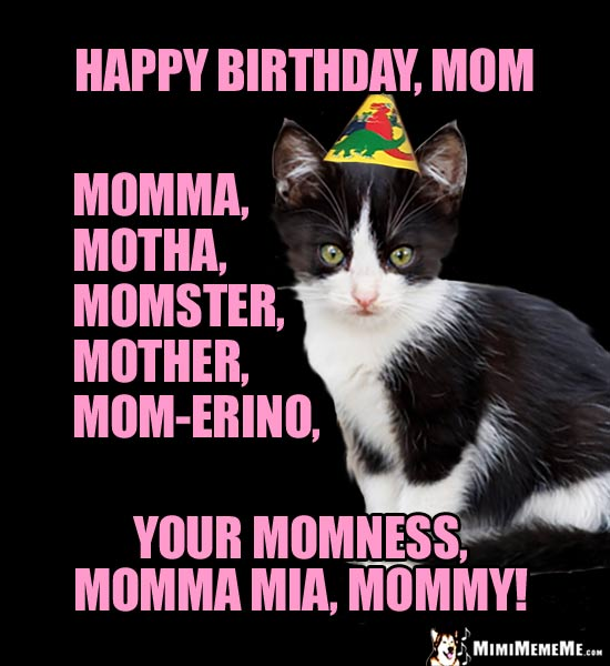 happy birthday mom memes ; bDayMommaCat