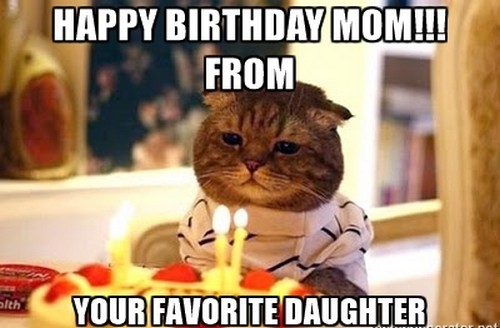 happy birthday mom memes ; birthday_cat_happy_birthday_mom_meme1