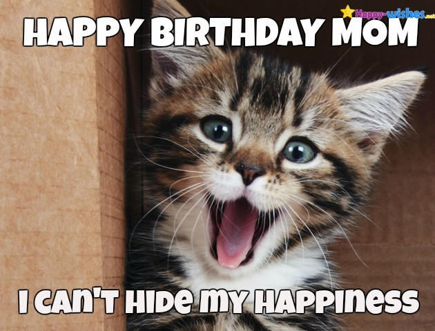 happy birthday mom memes ; happy-birthday-memes-for-mother-cat-2