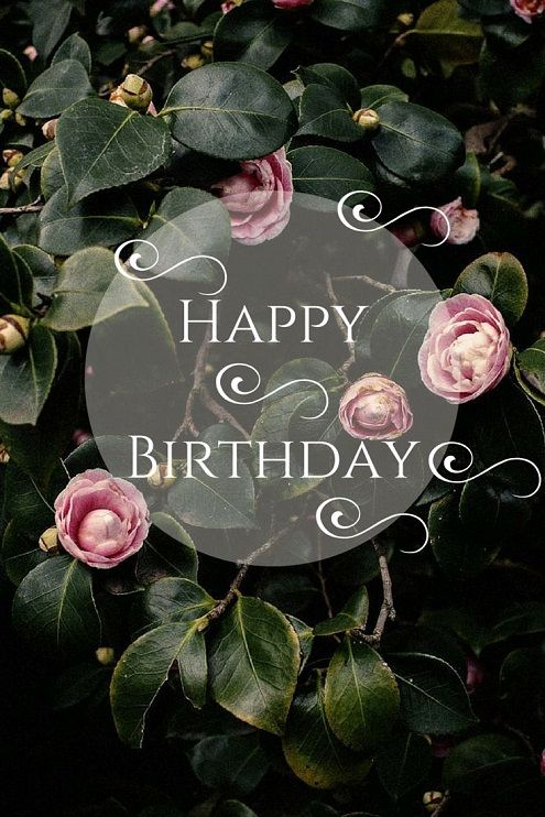 happy birthday pictures for a woman ; 38171ba004a8f485115a135e9ba5d4ef