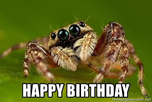 happy birthday spider ; 54705498