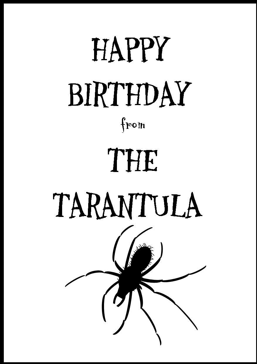 happy birthday spider ; happy-birthday-from-the-spider-2-35-p