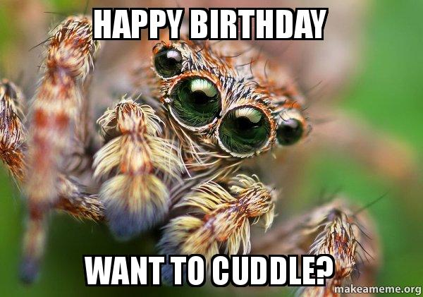 happy birthday spider ; happy-birthday-want