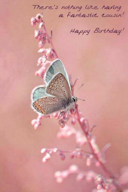 happy birthday sweet cousin ; birthday-cards-for-cousins-free-fresh-25-unique-electronic-birthday-cards-ideas-on-pinterest-of-birthday-cards-for-cousins-free