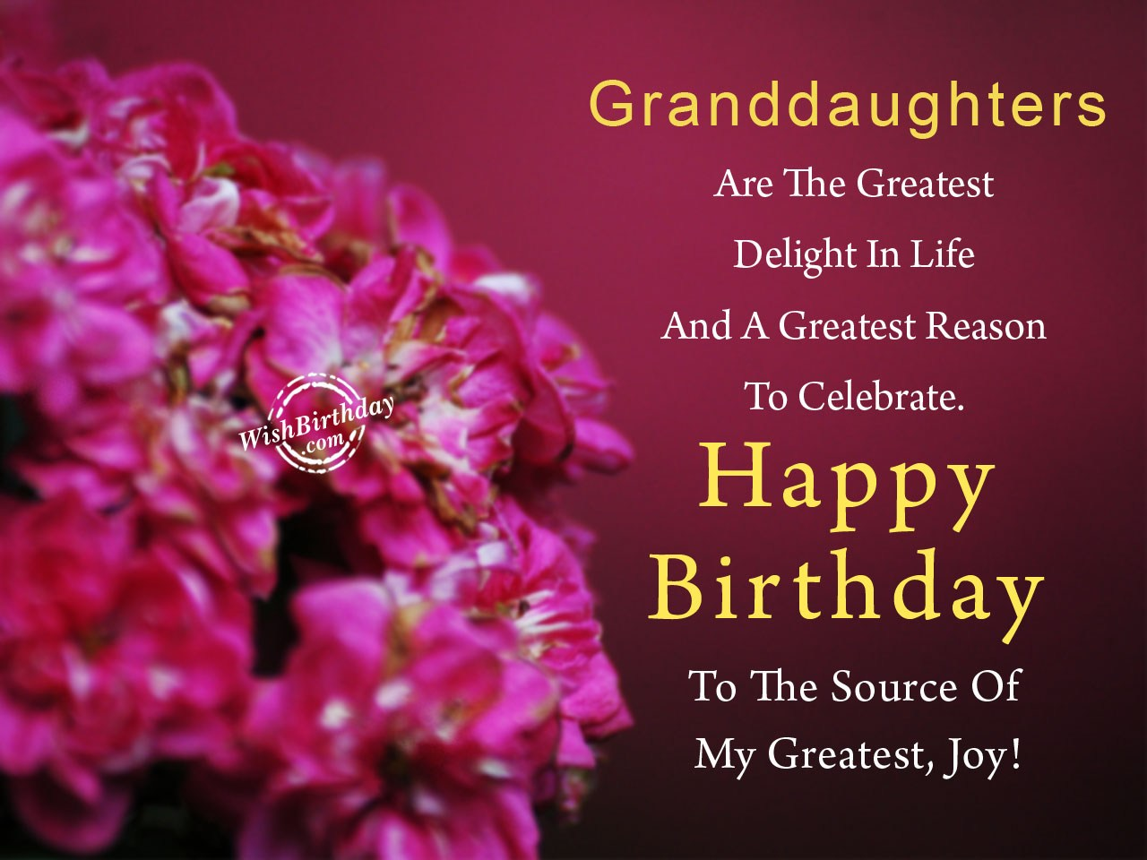 happy birthday to my granddaughter images ; Granddaughters-Are-The-Greatest-Delight-In-Life