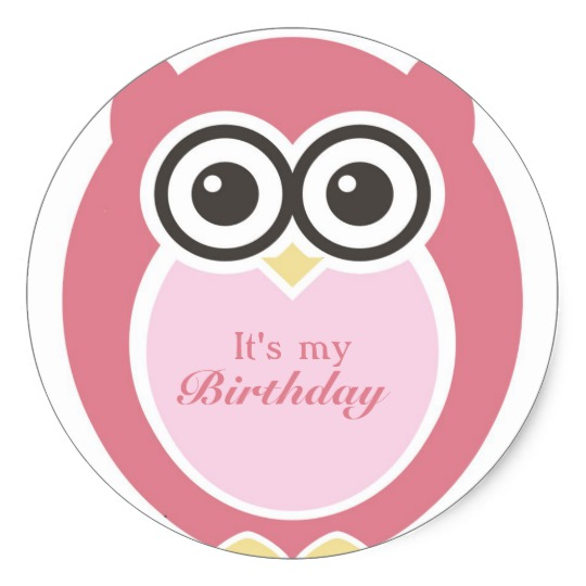 it's my birthday stickers ; its_my_birthday_stickers_cute_pink_owl_cartoon-r415d0f7f25564cf79573b396b4f95f71_v9wth_8byvr_540