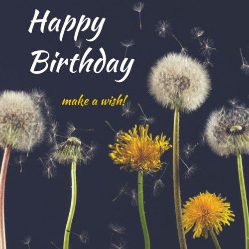 make a happy birthday picture ; 184099-Happy-Birthday-Make-A-Wish