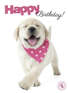 picture of a dog saying happy birthday ; 0dcab810704d2465060b8d73bd0f2062--happy-birthday-puppy-pet-birthday