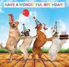 picture of a dog saying happy birthday ; 4711235a8f5fc4a1c52f721295c6717c